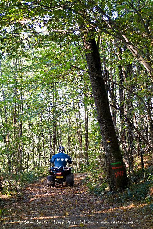 Person riding alone on a quad bike through a forest during autumn, France.