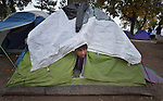 A man pokes his head out of a tent in a city park in Belgrade, Serbia. The park has filled with refugees from Syria, Afghanistan and other countries on their way to western Europe.