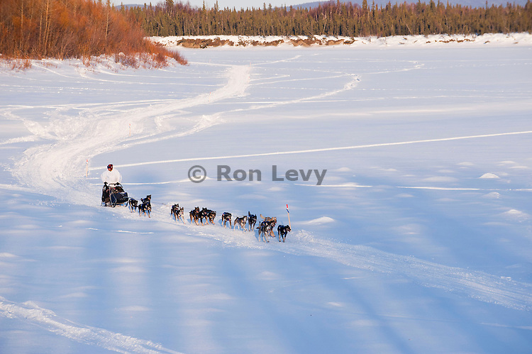 Iditarod veteran musher Martin Buser coming up from Kuskokwim River into McGrath checkpoint, Iditarod 2011, Alaska