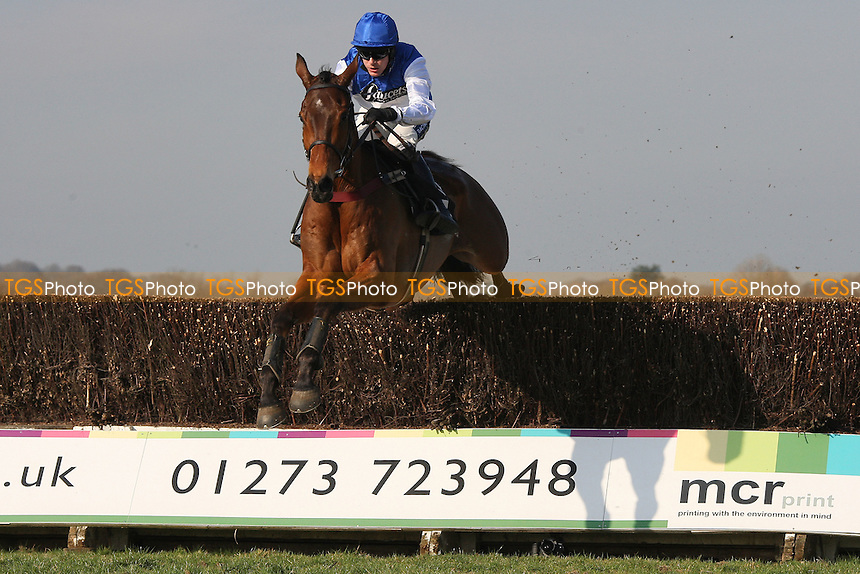 Race winner Relax ridden by Aidan Coleman clears the last in the SVS Securities Preferred Partnership For IFAs Novices Handicap - Horse Racing at Plumpton Racecourse, East Sussex - 12/03/12 - MANDATORY CREDIT: Gavin Ellis/TGSPHOTO - Self billing applies where appropriate - 0845 094 6026 - contact@tgsphoto.co.uk - NO UNPAID USE.