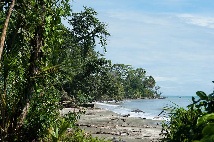 Beach near Cahuita, Costa Rica.