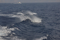 SEA_LOCATION_80151