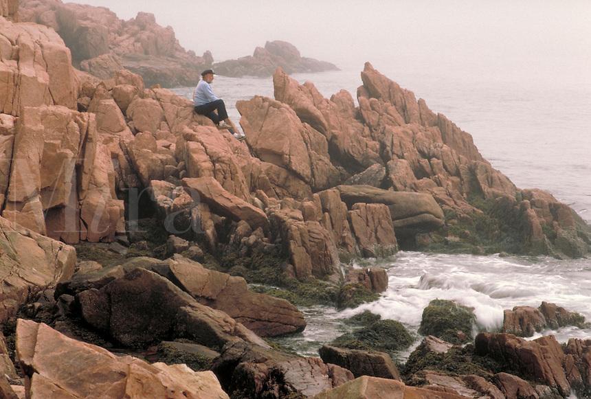 Rocky coast of Maine.