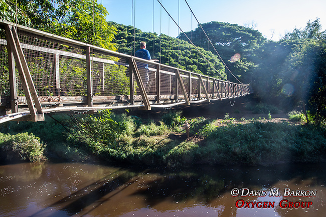 Adam On Bridge Over Menehune Ditch