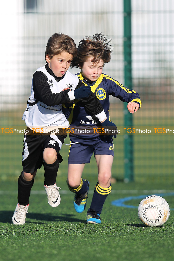Great Notley Scorpions FC vs Braintree Town Youth & Girls FC - Blackwater & Dengie Youth League Under-8s Dengie Division - 25/11/12 - MANDATORY CREDIT: Gavin Ellis/TGSPHOTO - Self billing applies where appropriate - 0845 094 6026 - contact@tgsphoto.co.uk - NO UNPAID USE.