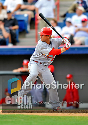7 March 2012: St. Louis Cardinal catcher Bryan Anderson in action against the Washington Nationals at Space Coast Stadium in Viera, Florida. The teams battled to a 3-3 tie in Grapefruit League Spring Training action. Mandatory Credit: Ed Wolfstein Photo