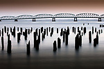 Pilings, Astoria–Megler Bridge, Columbia River, Oregon