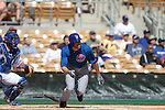 Chicago Cubs ,during Cactus League ,Cubs vs Dodgers. Spring Trainig 2013..Camelback Ranch  in Arizona. February 25, 2013 ...© stringer/NortePhoto