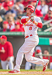 2 March 2013: St. Louis Cardinals infielder Ryan Jackson in action during a Spring Training game against the Washington Nationals at Roger Dean Stadium in Jupiter, Florida. The Nationals defeated the Cardinals 6-2 in their first meeting since the NLDS series in October of 2012. Mandatory Credit: Ed Wolfstein Photo *** RAW (NEF) Image File Available ***