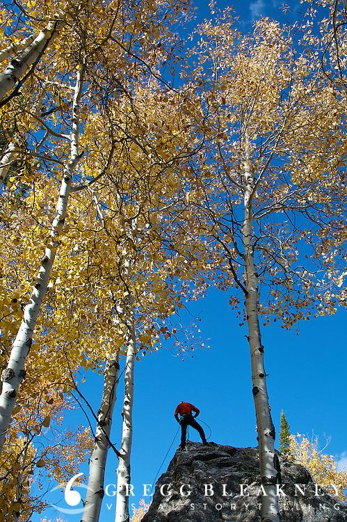 Rock Climber - Jackson - Wyoming - USA