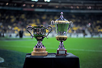 The series trophies on display before the Steinlager Series international rugby match between the New Zealand All Blacks and France at Westpac Stadium in Wellington, New Zealand on Saturday, 16 June 2018. Photo: Dave Lintott / lintottphoto.co.nz