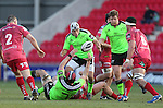Munster flanker Tommy O'Donnell finds outside half Duncan Williams in support.<br /> Guiness Pro12<br /> Scarlets v Munster<br /> 21.02.15<br /> ©Steve Pope -SPORTINGWALES