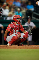 Peoria Chiefs catcher Dennis Ortega (28) waits to receive a pitch during a game against the Bowling Green Hot Rods on September 15, 2018 at Bowling Green Ballpark in Bowling Green, Kentucky.  Bowling Green defeated Peoria 6-1.  (Mike Janes/Four Seam Images)