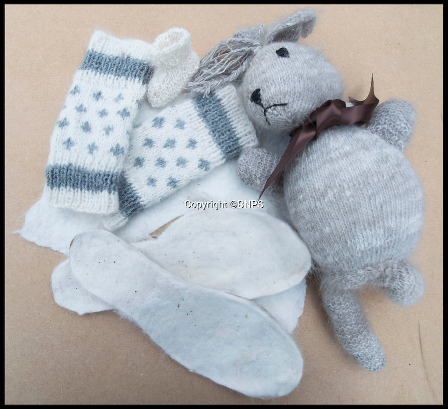 BNPS.co.uk (01202 558833)<br /> Pic: LauraDale/BNPS<br /> <br /> Super warm boot liners, gloves and socks and even a stuffed rabbit.<br /> <br /> Resourceful rabbit owner Sally May is making her winter woollies from the fleece of her fluffy Angora bunnies.<br /> <br /> Sally, who lives in Wiltshire, got her first Angora rabbit 40 years ago when a friend wanted to get rid of one. Now she has 20 which she regularly clips to make the warmest, softest, and even waterproof, wool.<br /> <br /> Angora fibres are prized for their fluffy texture. It's about six times warmer than sheep's wool, and the fibre is also exceptionally fine, just 11 microns (thousands of a millimetre), which make it softer than cashmere. It has a trade value of £22 to £28 per kilo.<br /> <br /> The 67-year-old also exhibits her pampered pets at big shows, the rabbit equivalent of Crufts, and her brown-grey angora Brianna just won 'best in show' at the Three Counties Show in Malvern, just beating its sister Bunny.