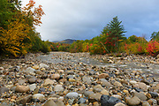 Looking downstream at autumn foliage along the rocky East Branch of the Pemigewasset River, near Lincoln Village, in Lincoln, New Hampshire on a cloudy rainy autumn day.
