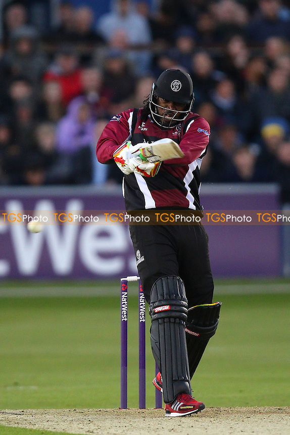 Chris Gayle in batting action for Somerset - Essex Eagles vs Somerset - NatWest T20 Blast Cricket at the Essex County Ground, Chelmsford, Essex - 29/05/15 - MANDATORY CREDIT: Gavin Ellis/TGSPHOTO - Self billing applies where appropriate - contact@tgsphoto.co.uk - NO UNPAID USE