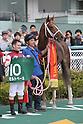 Horse Racing : Antares Stakes at Hanshin Racecourse