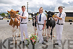 T.J. Maunsell, Abbeydorney (1st), Lauren Fitzmaurice, Ballyduff (2nd), Jack Walsh, Scartaglin (3rd). at the Castleisland Mart Calf Show on Saturday