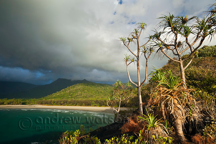 VIew of Myall Beach during morning rain storm.  Cape Tribulation, Daintree National Park, Queensland, Australia