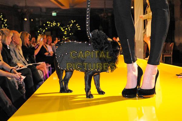 ATMOSPHERE .Harrods 7th Annual Pet-A-Porter Dogwalk Event, Harrods, Knightsbridge, London, England. .November 26th, 2009 .dog animal pet catwalk runway profile grey gray.CAP/FIN.©Steve Finn/Capital Pictures.