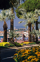 Cannes. View across La Croisette towards Le Suquet. Cote d'Azur, Provence, France..