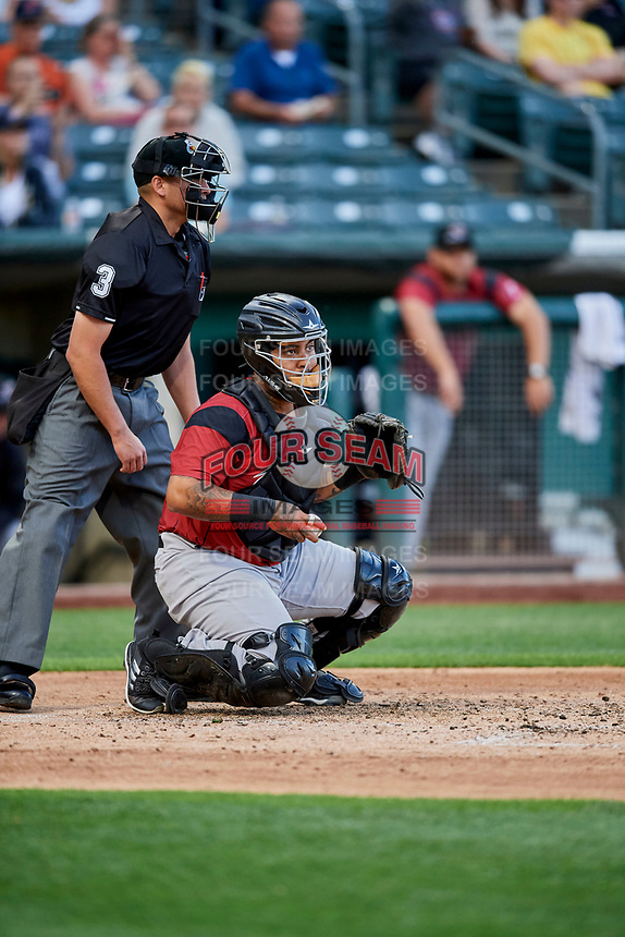 Hector Sanchez (29) of the Sacramento River Cats during the game against the Salt Lake Bees at Smith's Ballpark on May 17, 2018 in Salt Lake City, Utah. Salt Lake defeated Sacramento 12-11. (Stephen Smith/Four Seam Images)