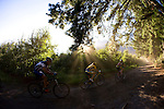 Cape Argus Pick nPay Boschendal Mountain Bike Challenge