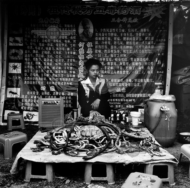 A Chinese man sells whole reptiles and reptile parts for medicinal purposes on a stall in a market in Dali.