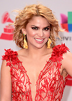 LAS VEGAS, NV - NOVEMBER 16:  Adriana Lucia at the 18th Annual Latin Grammy Awards at the MGM Grand Garden Arena on November 16, 2017 in Las Vegas, Nevada. (Photo by Scott Kirkland/PictureGroup)