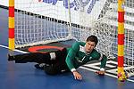 Niklas Landin. DENMARK vs HUNGARY: 28-26 - Quarterfinal.