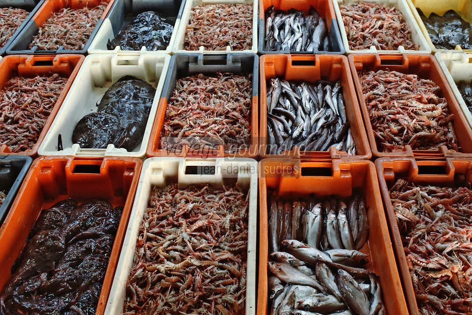 Europe/France/Bretagne/29/Finistère/Concarneau: La criée - Casiers de poissons