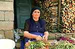 Lin-Pogradec-Albania - August 02, 2004---A woman from the village of Lin sorting her harvested beans at her home garden; region/village of project implementation by GTZ-Wiram-Albania (German Technical Cooperation, Deutsche Gesellschaft fuer Technische Zusammenarbeit (GTZ) GmbH); agriculture-people-portrait---Photo: Horst Wagner/eup-images