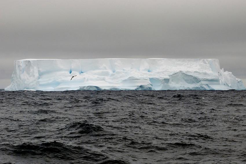 Vanilla Gateaux - Iceberg in the Southern Ocean