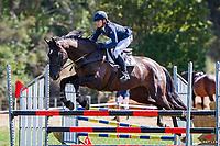 Class 25 AMS Saddlery Horse 1.00m. 2020 NZL-Fieldline Horse Floats Brookby Showjumping Summer GP Show. Papatoetoe Pony Club. Auckland. Sunday 9 February. Copyright Photo: Libby Law Photography
