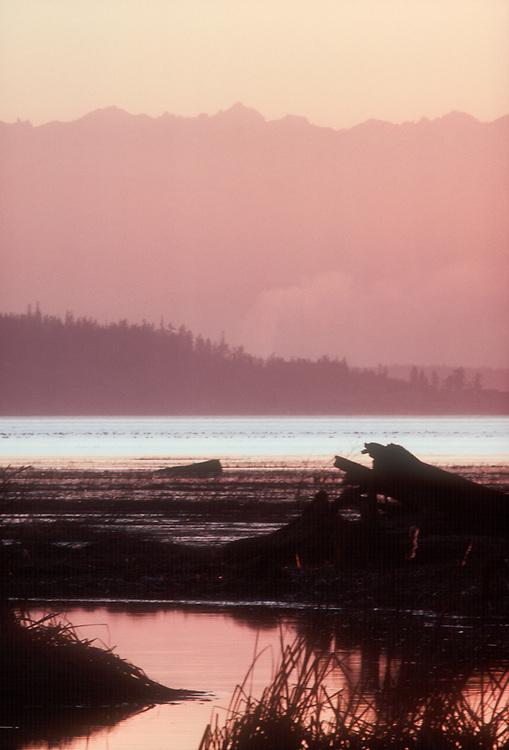 Puget Sound, Skagit Estuary, Olympic Mountains, Sunset, Washington State, Pacific Northwest, USA,..