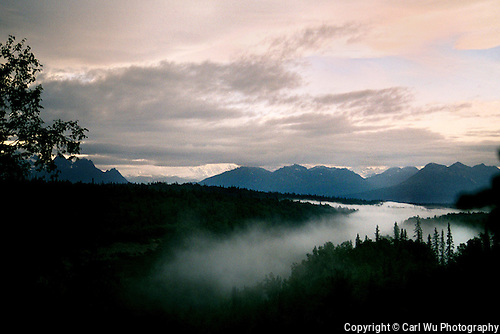 A Mist Starts To Roll Over The Trees At The Mt. McKinley Princess Wilderness Lodge In Denali State Park, Alaska.