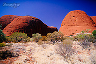 Image Ref: CA655<br />