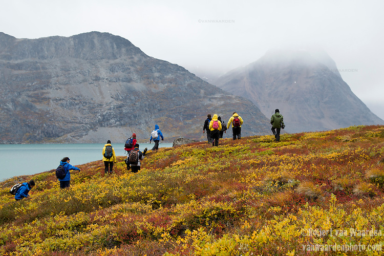 Students from the Cape Farewell Youth Expedition walk through the red and yello Greenland landscape. In the background, a fjord and the mountains of Greenland.