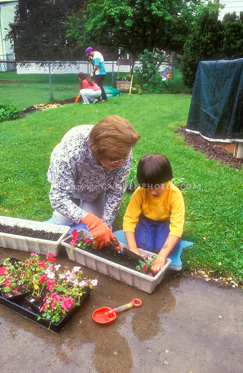 Grandmother and grandchild gardening together, with garden gloves, backyard grass, little boy and senior citizen intergenerational interaction between young and old person