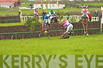 the point-to-point Race meeting in Ballybunion on Sunday afternoon.