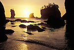 Sea Stacks on the Pacific coast of Olympic Peninsula