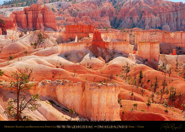 Mormon Temple and Bristlecone Point Landscape from Queen's Garden, Bryce Canyon National Park, Utah
