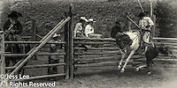 olf times Cowboys working and playing. Cowboy Cowboy Photo Cowboy, Cowboy and Cowgirl photographs of western ranches working with horses and cattle by western cowboy photographer Jess Lee. Photographing ranches big and small in Wyoming,Montana,Idaho,Oregon,Colorado,Nevada,Arizona,Utah,New Mexico.