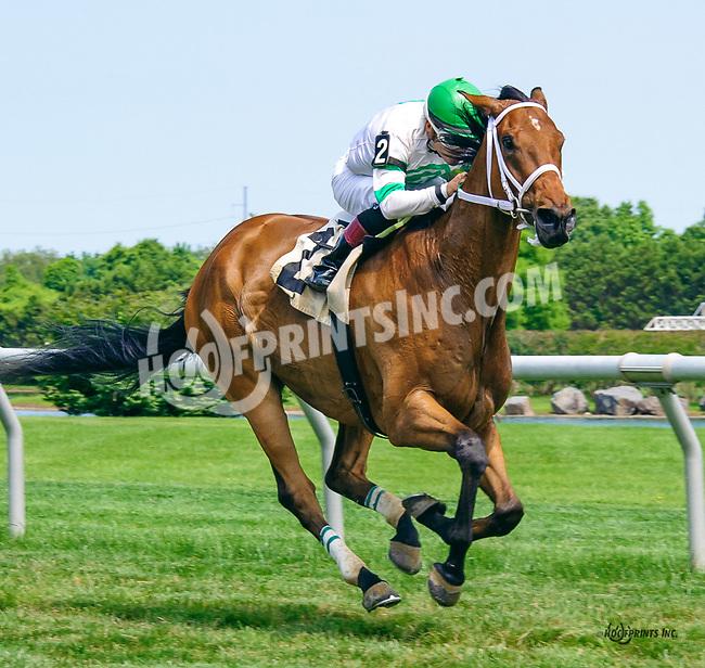 Svindhal winning at Delaware Park on 6/15/17