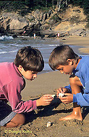 ON03-021z  Ocean - boys on beach examining shells