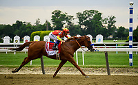 Elmont, NY - JUNE 09: #1, Justify passes the infield markers for the silks of the 12 previous Triple Crown Winners, and his eventual place in history, as he comes down the stretch of Big Sandy at Belmont Park; Jockey Mike Smith in the irons for Trainer Bob Baffert of the Triple Crown Winner during the 150th running of the Belmont Stakes at Belmont Park on June 9, 2018 in Elmont, New York. (Photo by Carson Dennis/Eclipse Sportswire/Getty Images)