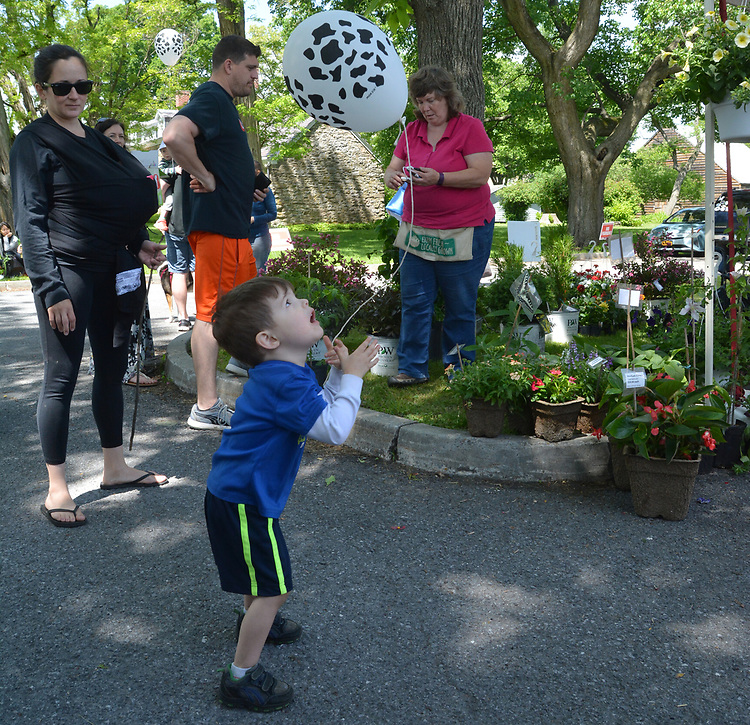 Overview of activity at the Nursery Booth at the Opening Day of the 2017 Saugerties Farmer's Market on Saturday, May 27, 2017. Photo by Jim Peppler. Copyright/Jim Peppler-2017.