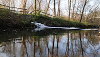Wasser im Auenwald in der Lauer Wasserweg zum Cosputener See.Leipzig Süd . Südraum, Wasser, Boot, Natur, Leipzig Land, Neuseennland. Photo.:Stefan Nöbel-Heise