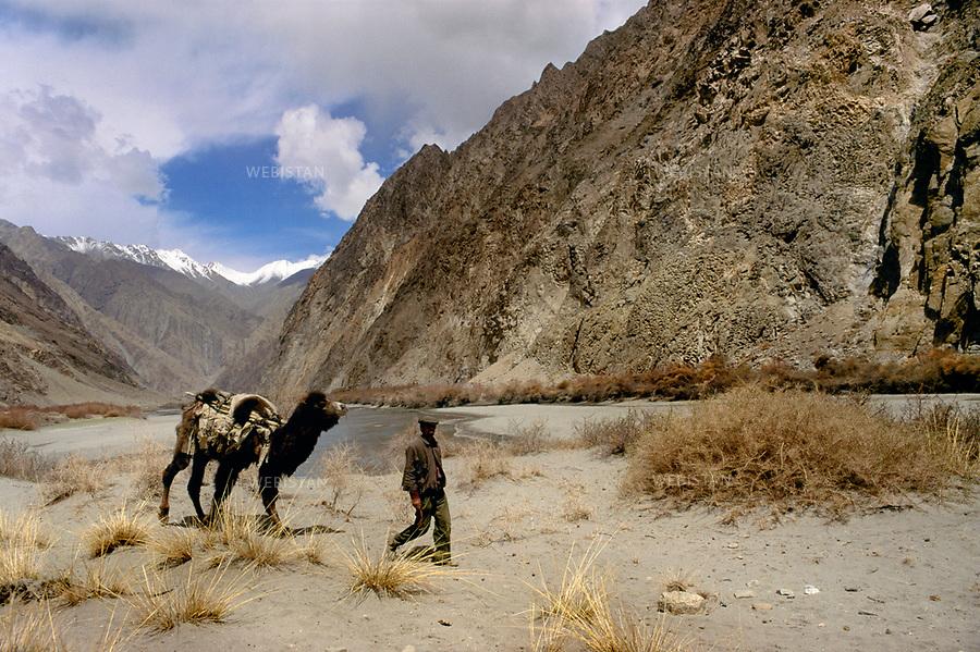 1995. Un Tadjik transporte du fourrage &agrave; dos de chameau dans le massif du Kunlun. / A Tajik carries fodder on the back of a camel in the Kunlun Mountains.<br /> HEMIS diffusion