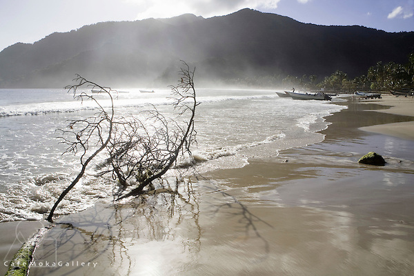 Maracas Bay, pirogues and fishermen and driftwood in the early morning sea mist, Trinidad